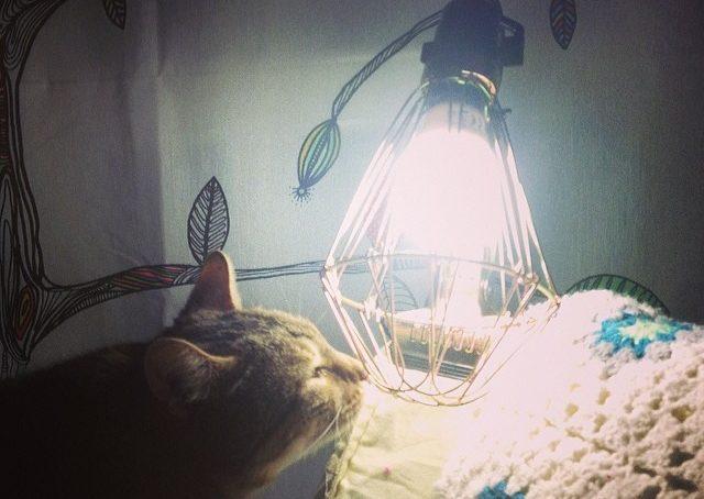 No ma bellissima la lampada Merci, ma parliamo dell'ora che