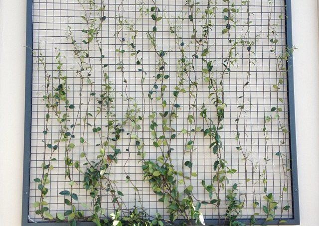 #isaloni #blogsalone #fuorisalone #fuorisalonecf #salonedelmobile #ideedacopiare #blog #brigicodehouse #garden #gardendesign