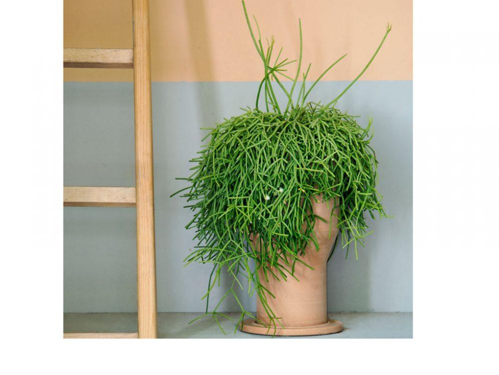 Come aggiustare i vasi di terracotta