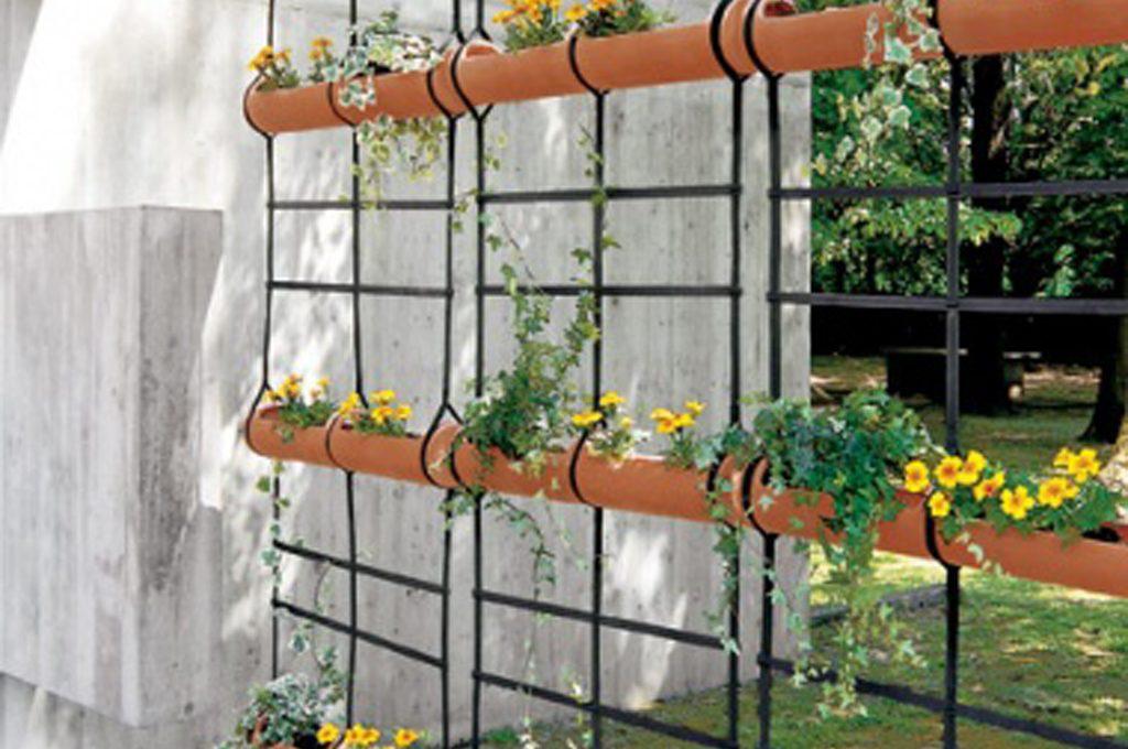 Piante Da Esterno : Piante per riparare un terrazzo in pieno sole casafacile