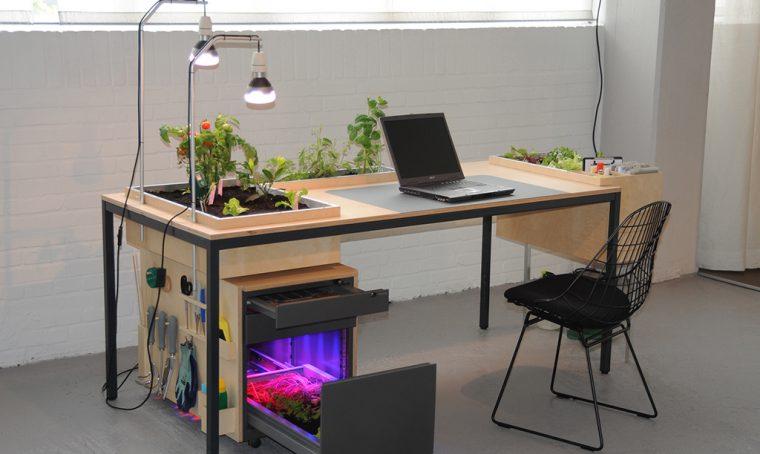 L'orto è… sulla scrivania!