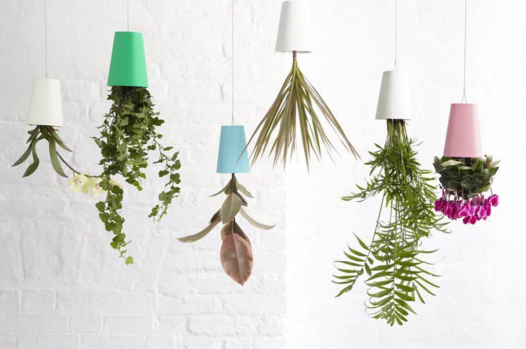 Amato Come realizzare un 'floating garden' con piante da appendere  WY87