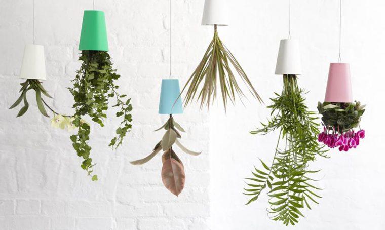 Come realizzare un 'floating garden' con piante da appendere