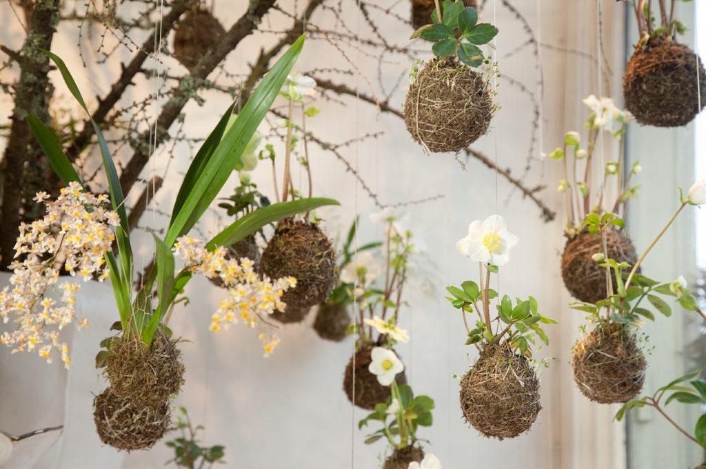 Favoloso Come realizzare un 'floating garden' con piante da appendere  KU73