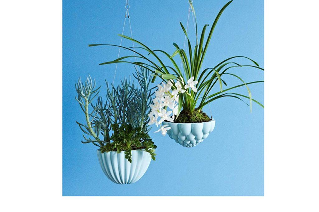 Porta Piante Fai Da Te : Come realizzare un floating garden con piante da
