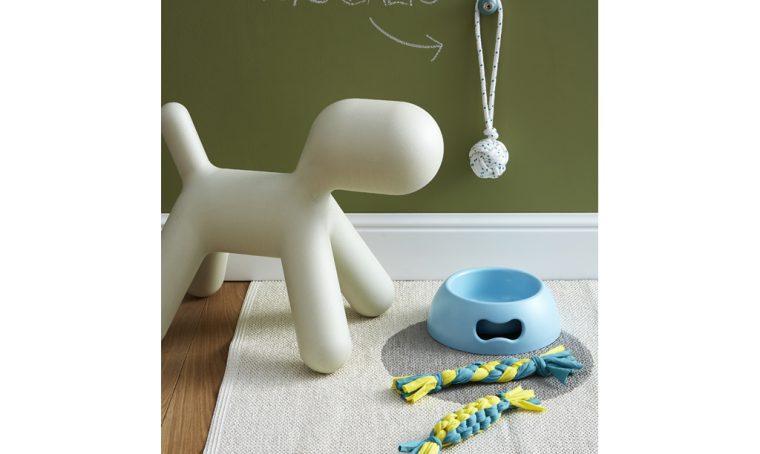 Fai da te: 2 giochi per il tuo cane