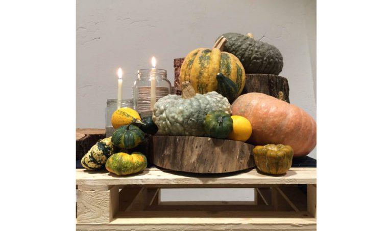 Décor d'autunno con le zucche ornamentali