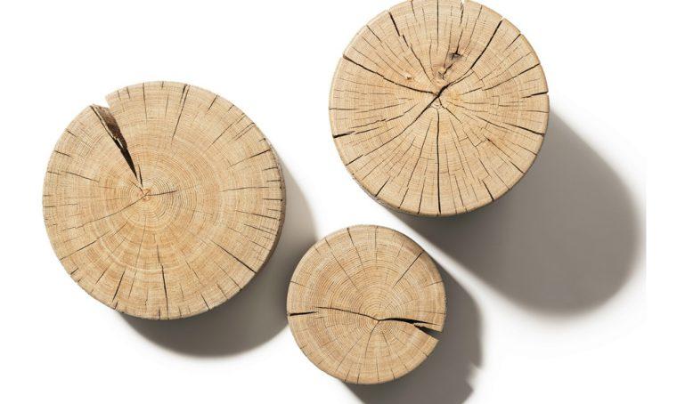 Un ceppo di legno diventa un oggetto di design