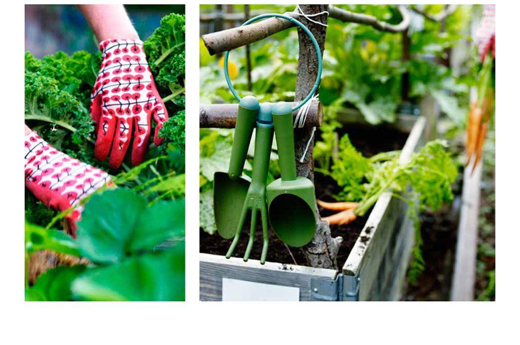 Come preparare le piante per l\'inverno - CASAfacile