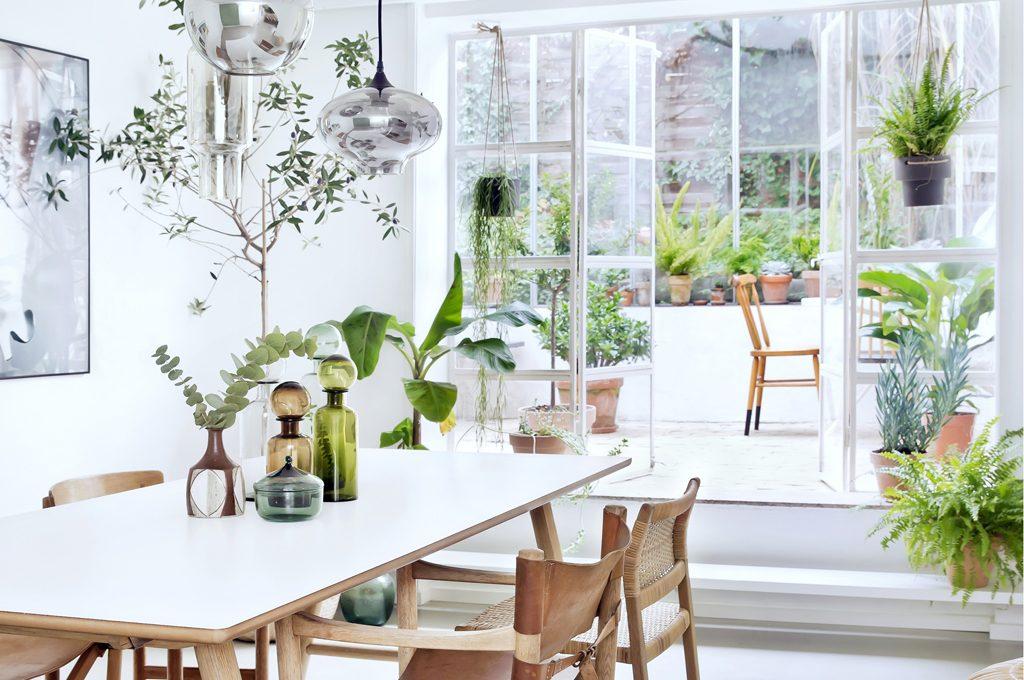 Piante da appartamento come creare un giardino d 39 inverno - Arredare giardino d inverno ...