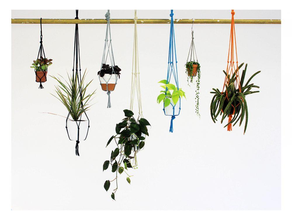 Decori botanici per la tua casa