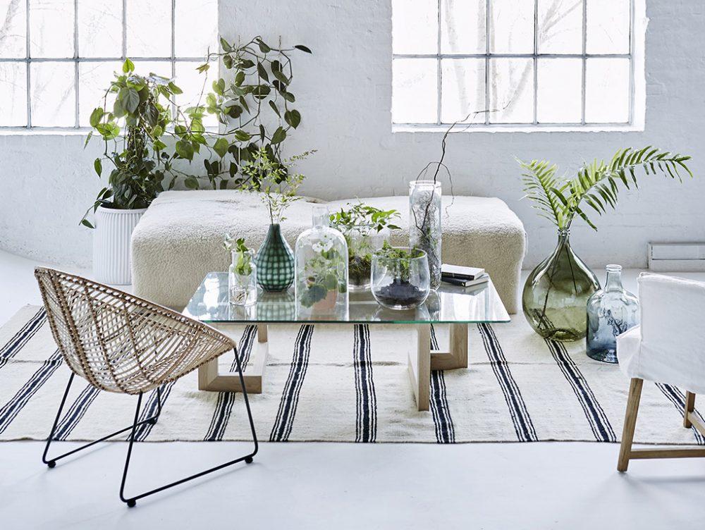 Scaffali e pannelli: nuovi spazi per le piante in casa