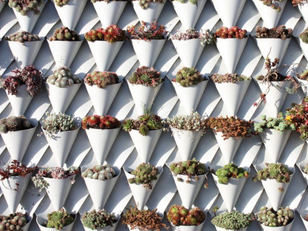 Tetti-giardino: le nuove tegole eco-green altamente isolanti