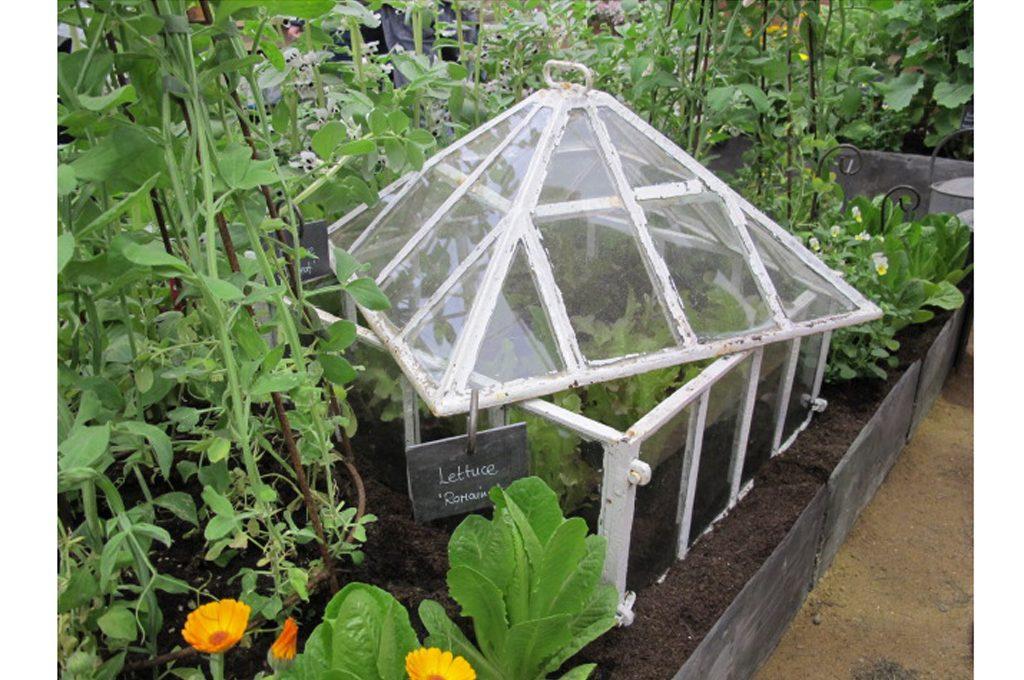 Marzo i lavori di giardinaggio da fare questo mese casafacile - Lavori da fare a casa ...