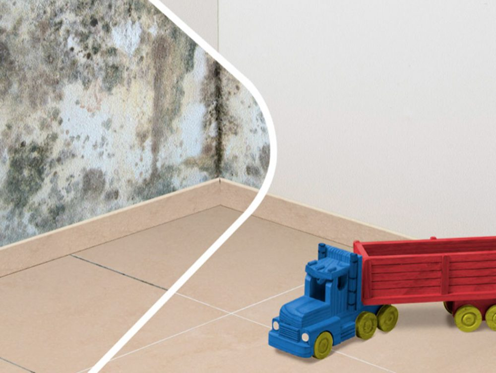 Ristrutturare – Muffa alle pareti: come eliminarla