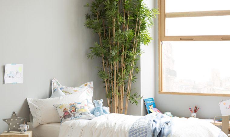 Le piante in camera da letto fanno male?