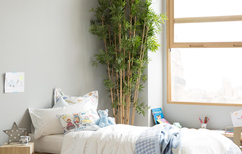 Le piante in camera da letto fanno male casafacile - Piante per camera da letto ...