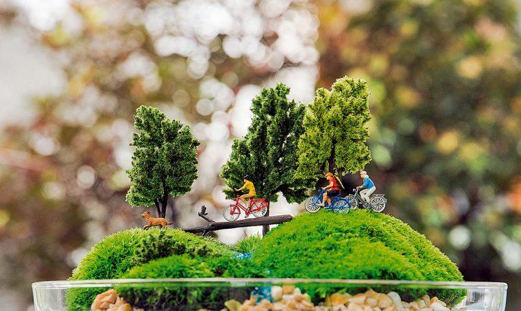 Terrario: il fascino dei giardini sotto vetro