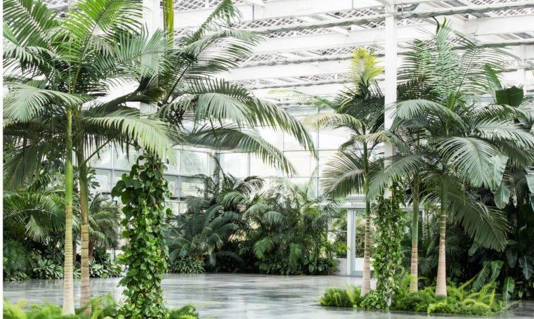 Radice Pura: il primo festival dedicato al garden design del Mediterraneo