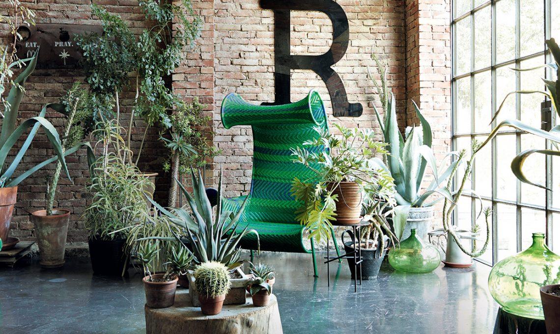 Porta lo stile jungle in casa casafacile