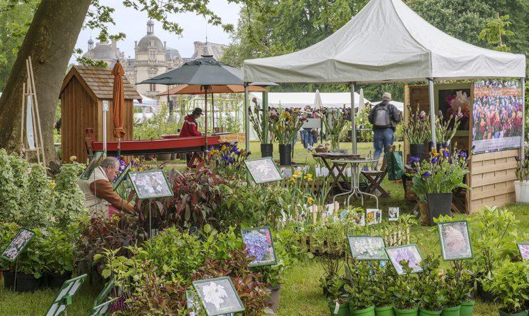Piante in mostra: apre il Journées des plantes de Chantilly