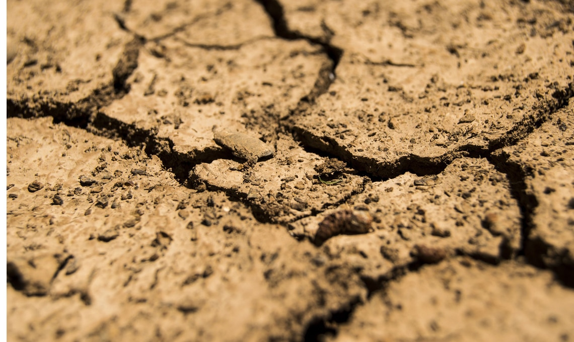 terreno secco arido