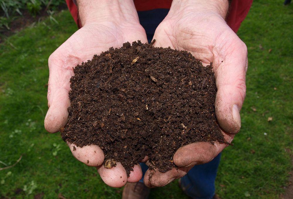 Come riconoscere le caratteristiche del tuo terreno