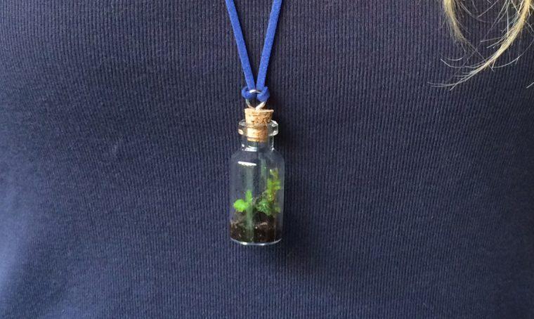 Crea il tuo ciondolo con un micro terrario