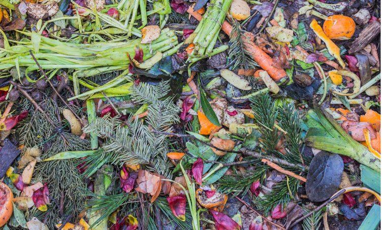 Scegli il compost giusto a seconda del tuo terreno