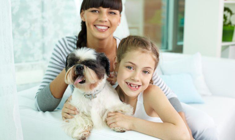 Animali in ospedale: in Lombardia si può