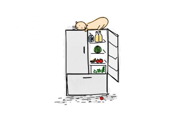 Il frigorifero non raffredda? Le possibili cause