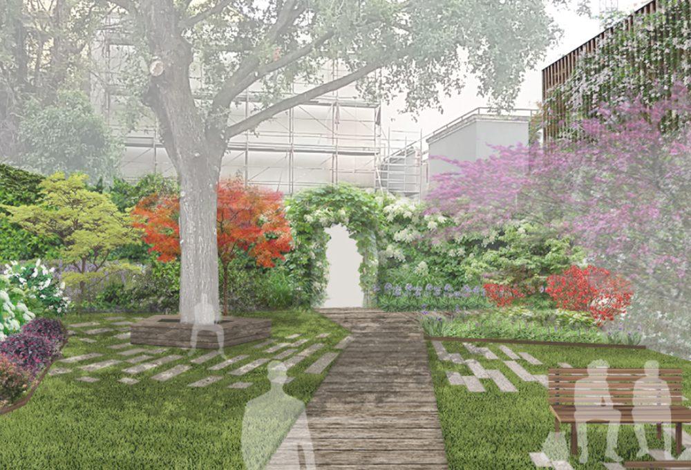 Intorno al vecchio olmo rinasce un giardino aperto a tutti