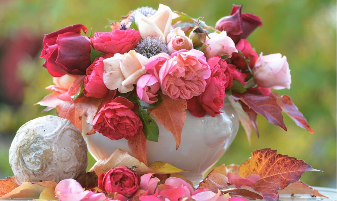 Piante Arredo Casa : Come far durare le rose recise casafacile