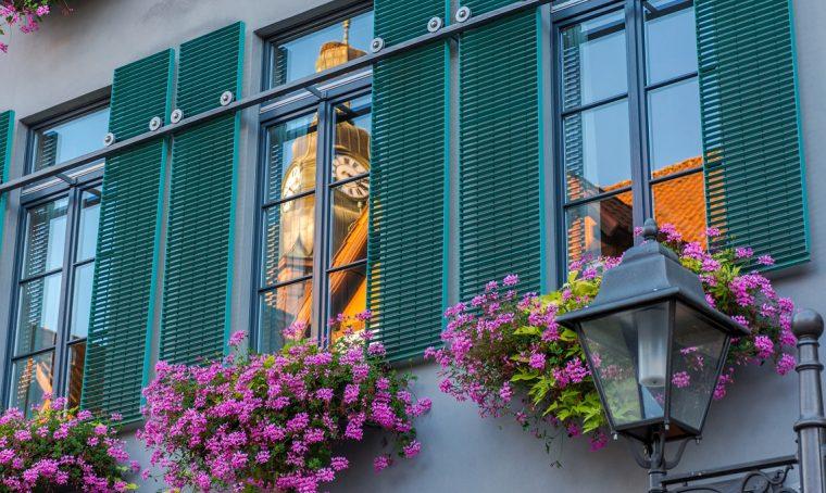 Le regole per evitare i litigi 'verdi' con i vicini di casa