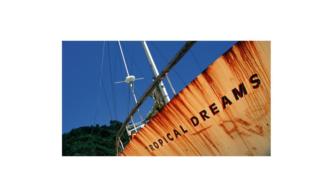 Paolo Gotti. Tropical dreams