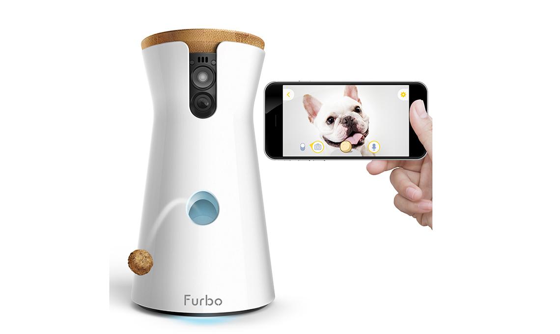 app per pappa cani