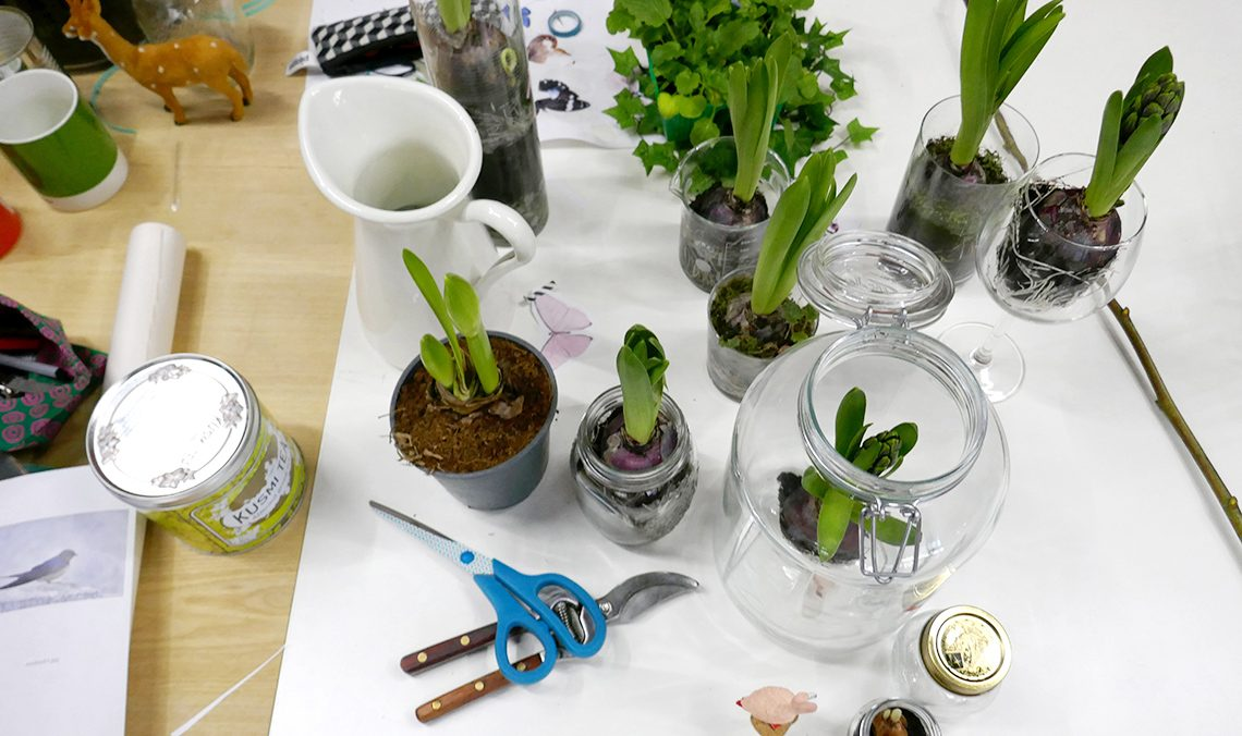 piantare bulbi di giacinto