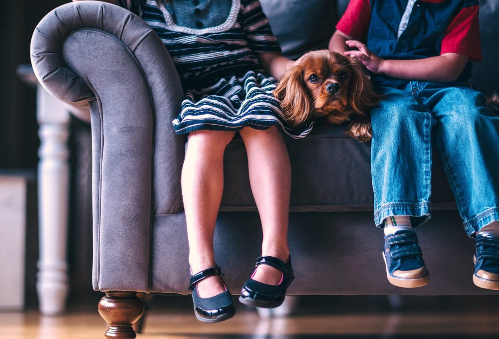 Come pulire il divano non sfoderabile
