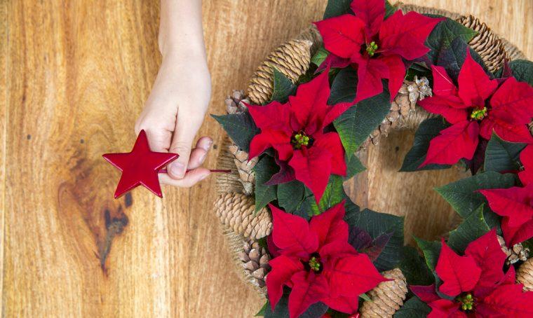 Come fare una ghirlanda centrotavola con le Stelle di Natale