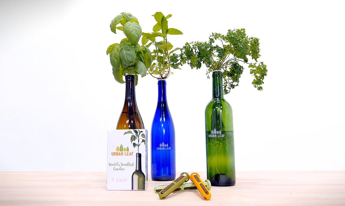 set piante aromatiche