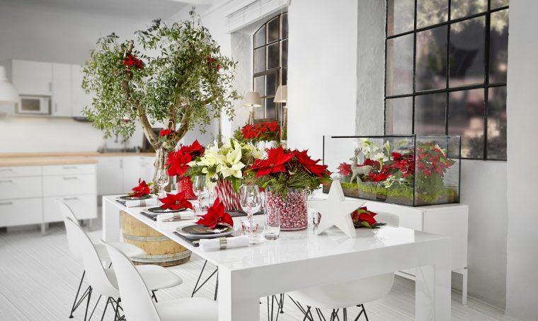 Come decorare la tavola e la casa con le Stelle di Natale