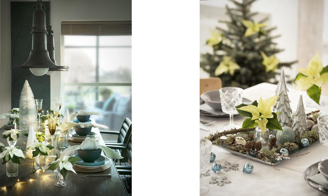 Come decorare la tavola e la casa con le stelle di natale casafacile - Come decorare la casa per natale ...