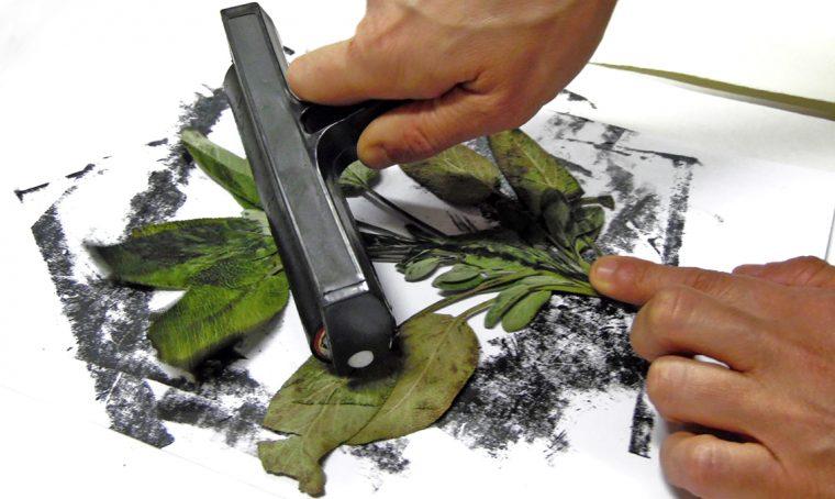 A Torino un workshop per realizzare stampe botaniche