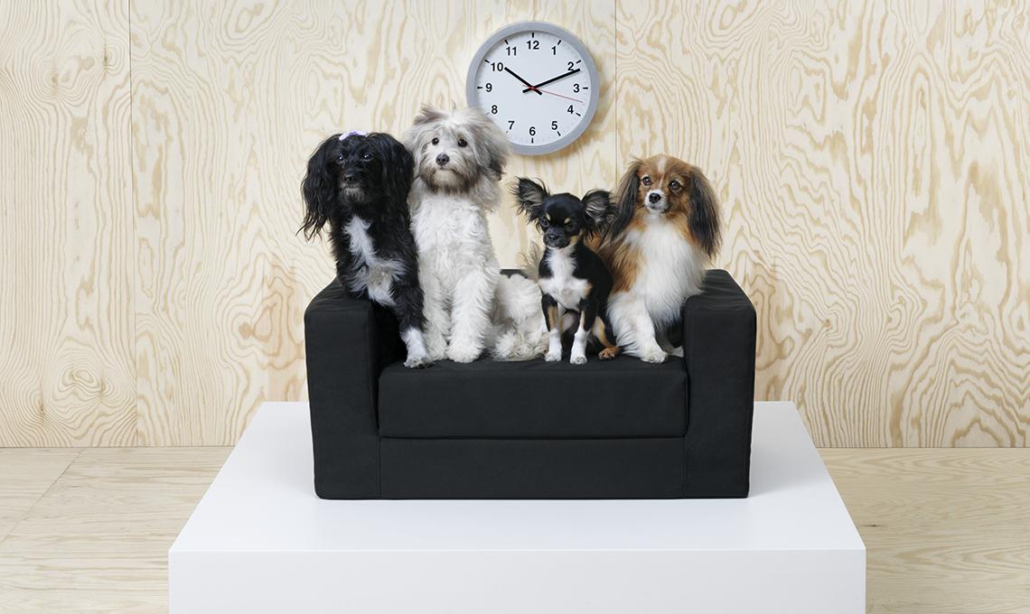 collezione-animali-ikea-divanetto