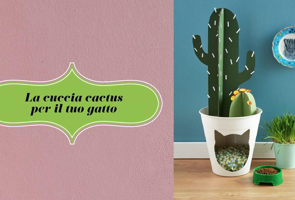 La cuccia cactus fai-da-te per il tuo gatto