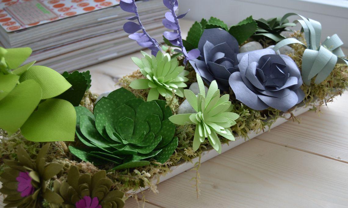 CasaFacile_CIGoccione_succulente_carta_verde_chiaro
