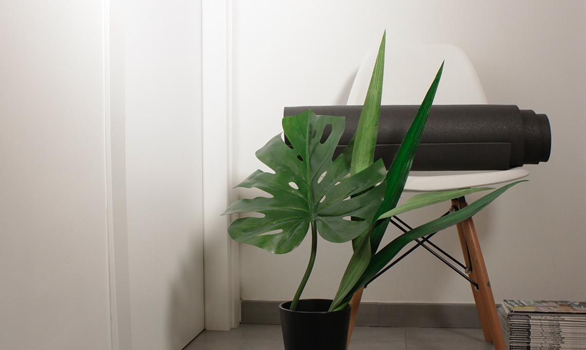 CasaFacile_DLibutti_Dedicati_Cose_Ami_piante