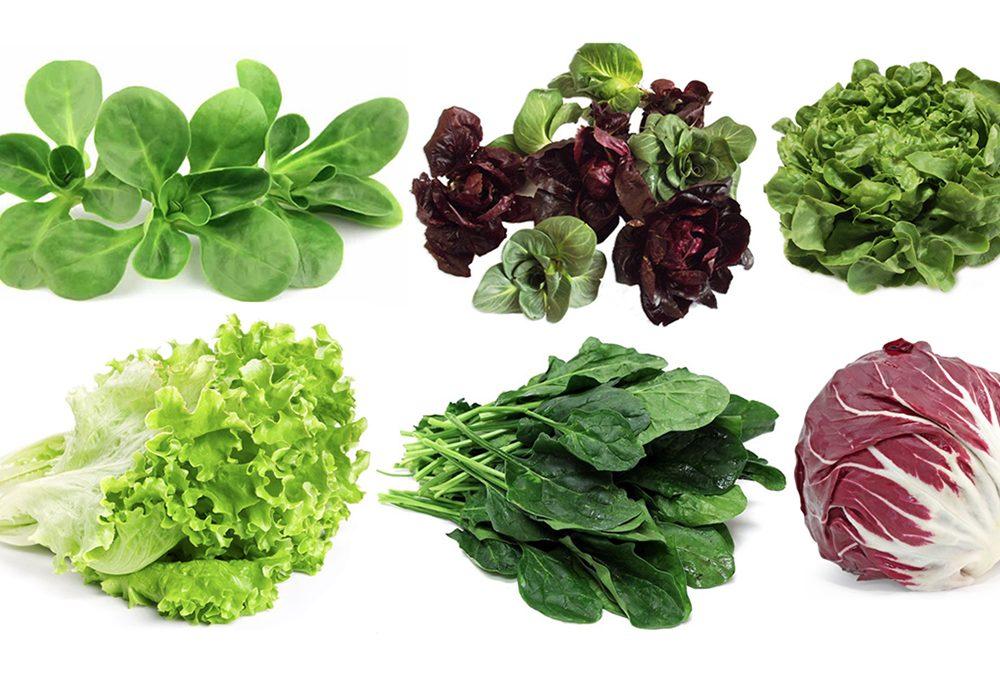 6 insalate da coltivare nell'orto