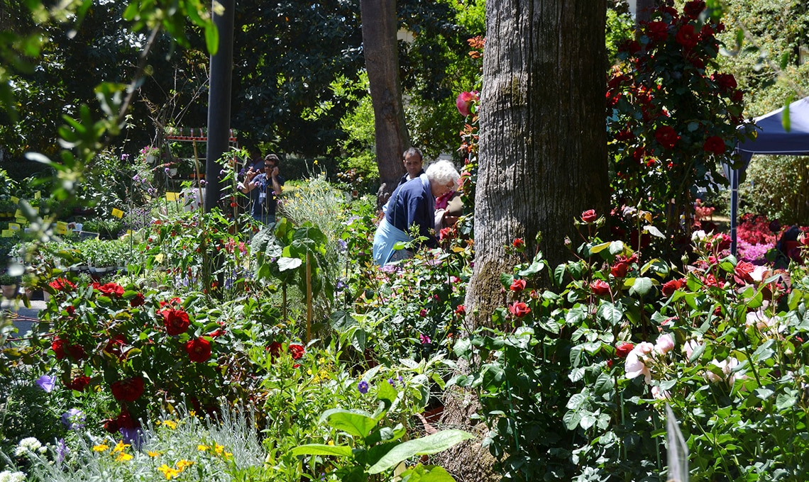 fiera giardinaggio napoli