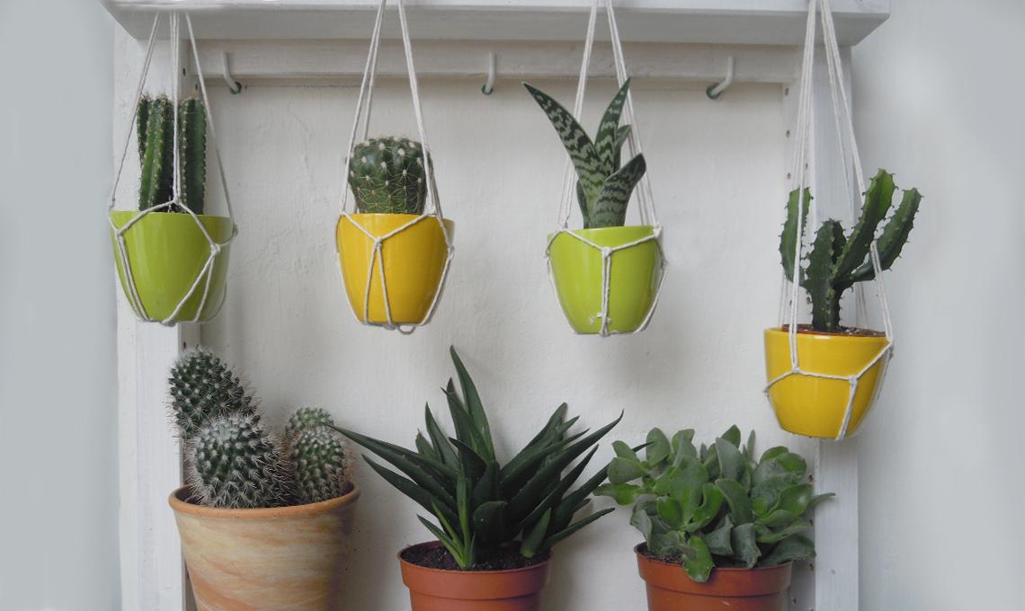Porta piante da appendere fai da te casafacile for Spranga per porta fai da te